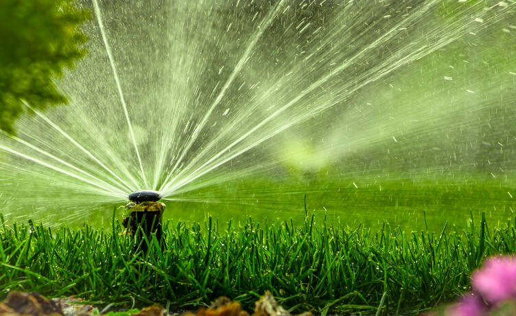 How and When to Water Your Lawn