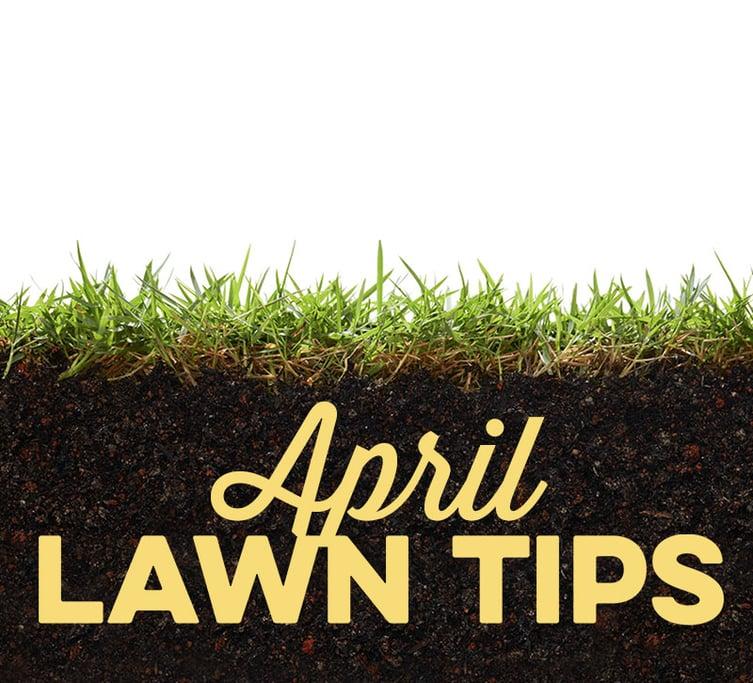 April Lawn Tips 2020