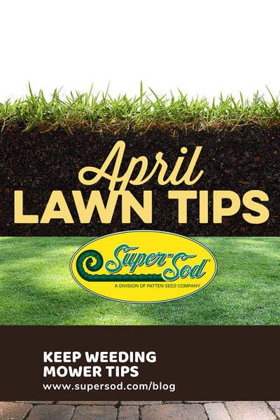 April_Lawn_Tips_pinterest
