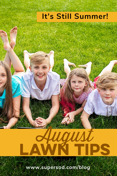 August Lawn Tips_Kids
