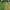 A Clear Difference - Robotic Lawn Mower vs. Traditional Lawn Mower - featured image