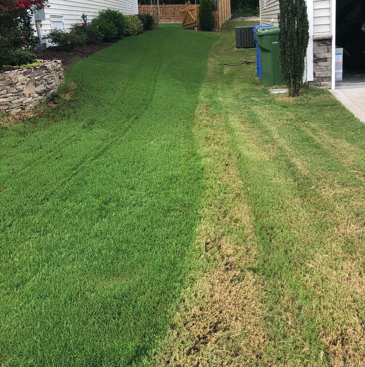 A Clear Difference - Robotic Lawn Mower vs. Traditional Lawn Mower