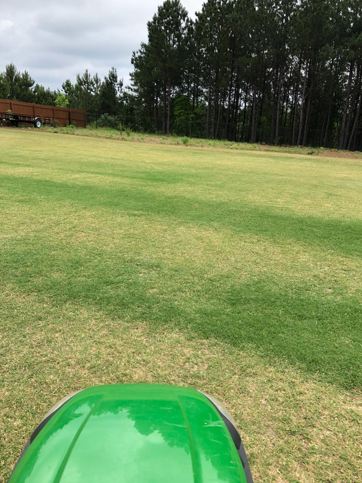 Daniel's TT lawn during Automower