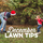 December Lawn Tips 2020 - featured image