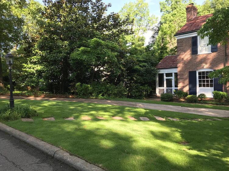 July Lawn Tips