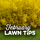 February Lawn Tips 2021 - featured image