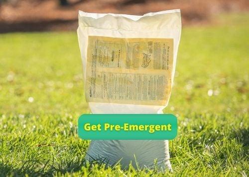 Get Pre-Emergent