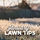 January Lawn Tips 2021 - featured image