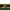 June Lawn Tips 2020 - featured image