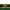 May Lawn Tips 2020 - featured image
