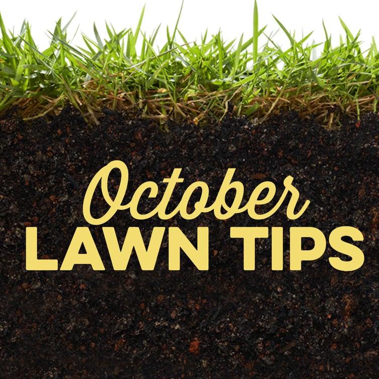 October Lawn Tips 2020