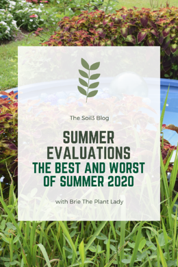 Summer Evaluations- The Best and Worst of Summer 2020