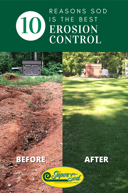 10 reasons sod is the best erosion control (1)