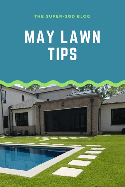 May Lawn Tips