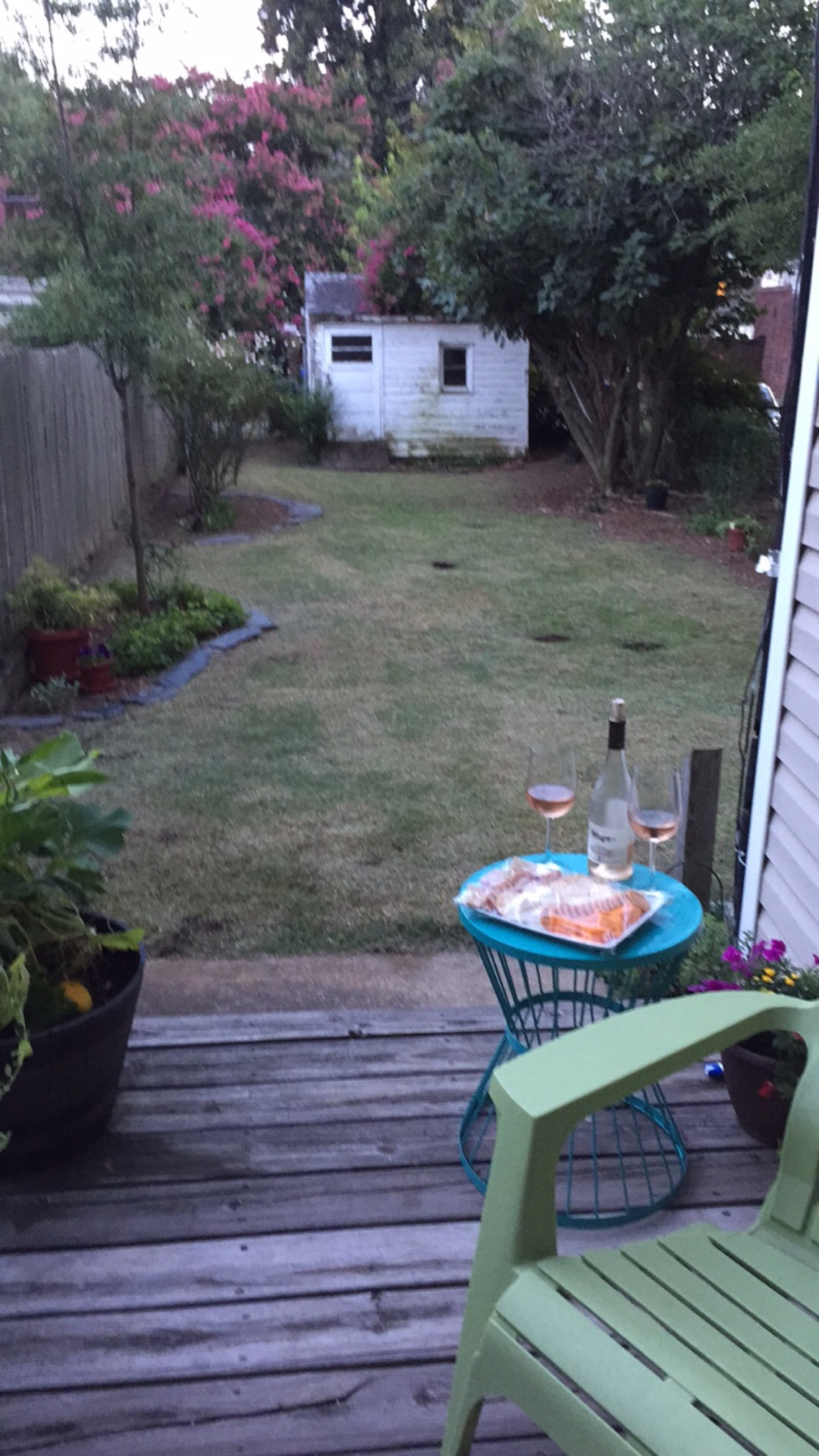 Enjoying the Results after restoring the overgrown lawn.jpg