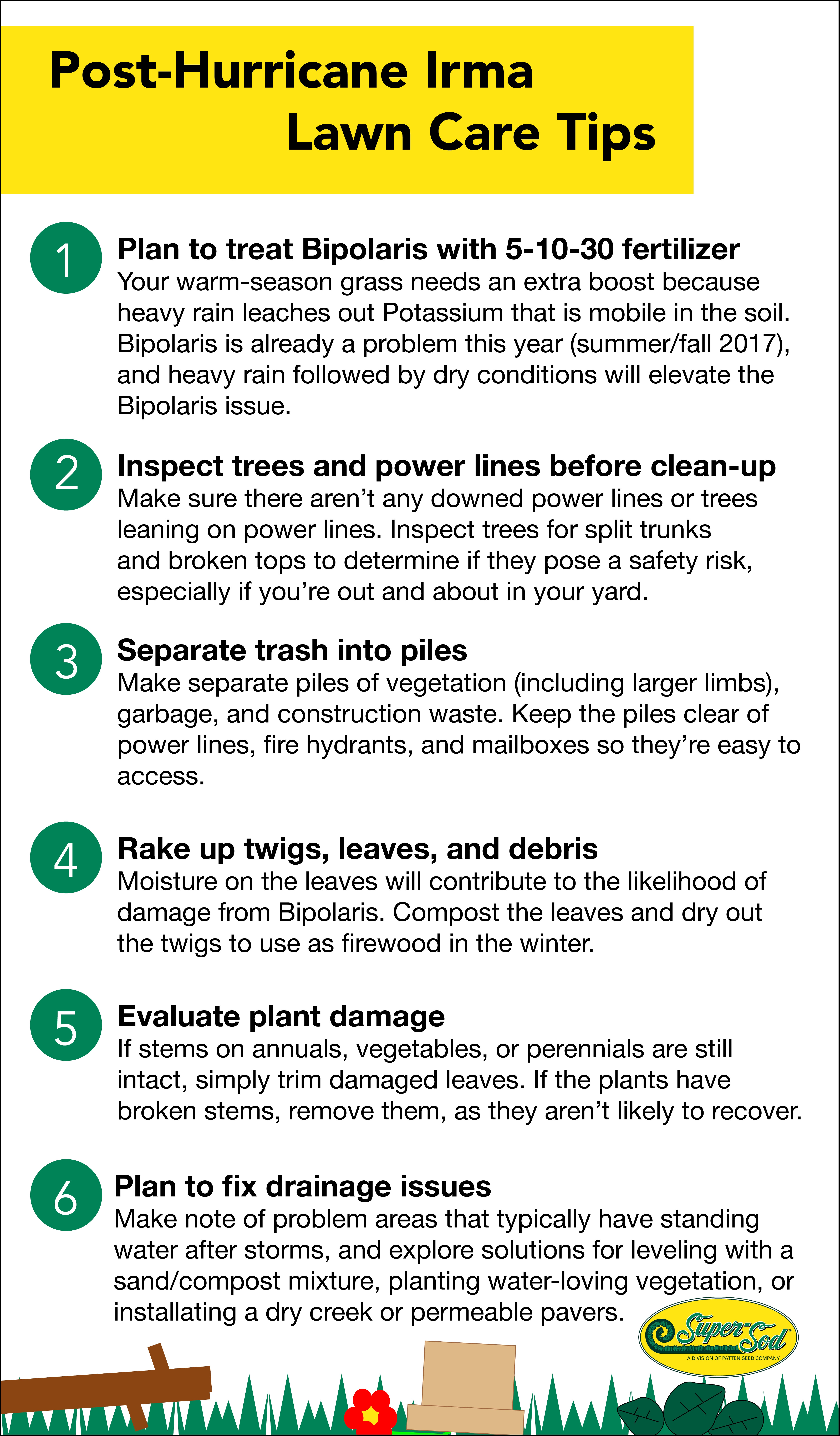 Post-Hurricane clean-up infographic.jpg