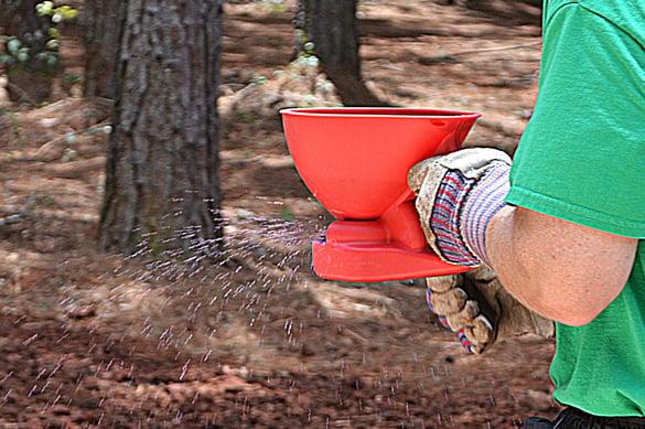 TifBlair Centipede Seed Seed Spreader 2.jpg