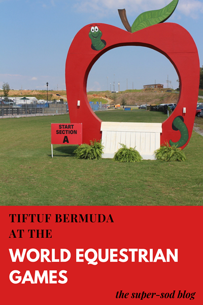 TifTuf Bermudagrass at the World Equestrian Games