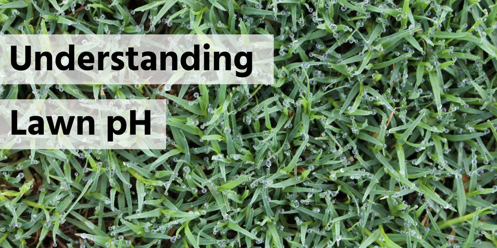 Understanding lawn pH header