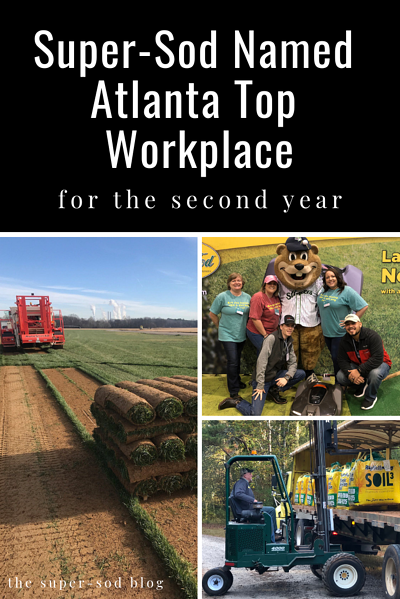 atlanta top workplace 2019