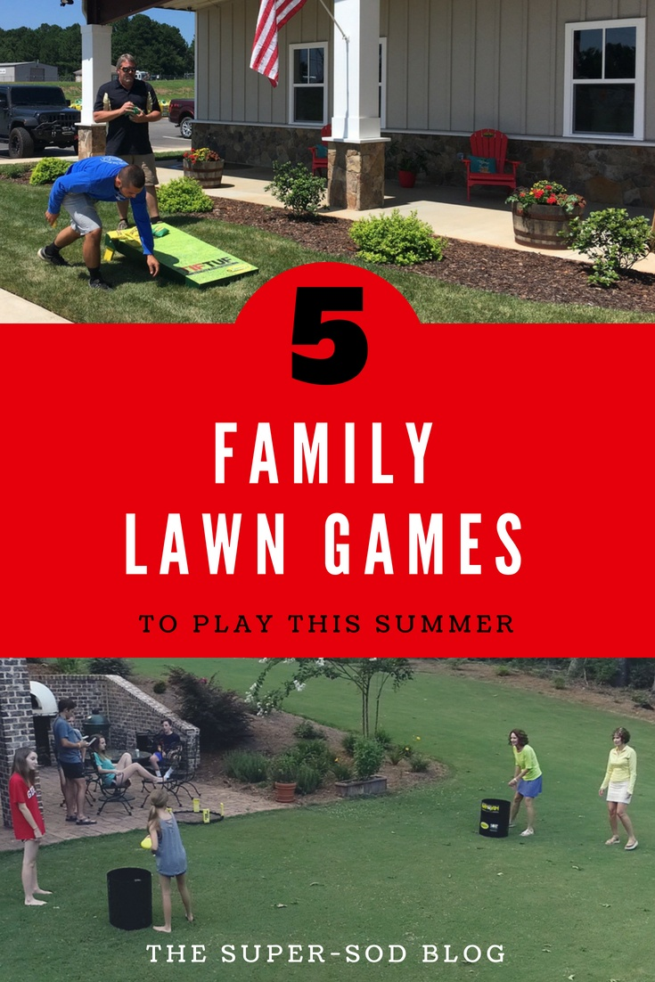 family lawn games