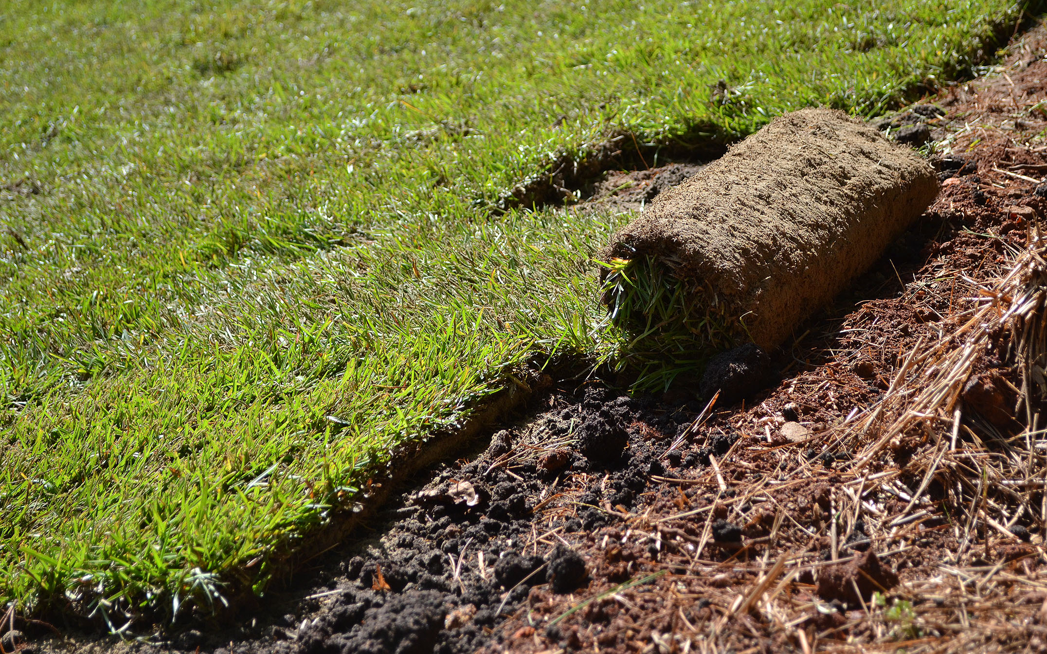 Up Your Curb Appeal in 2 Weeks: Laying your own sod