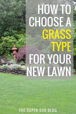 how to choose a grass type for your lawn