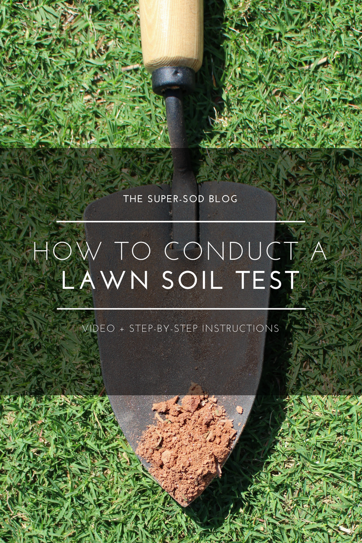 how to conduct a lawn soil test