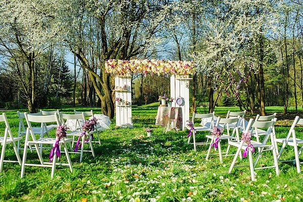 how_to_get_green_grass_for_backyard_wedding