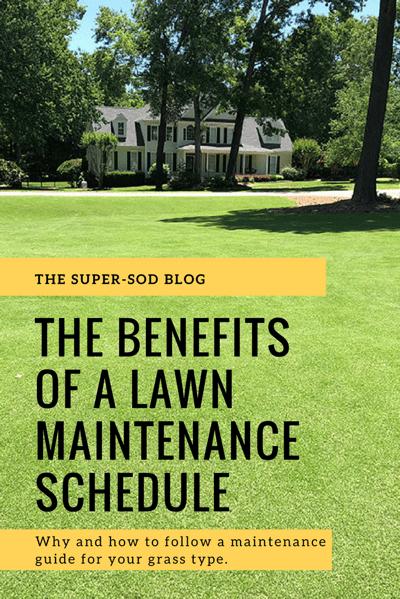 lawn maintenance schedule