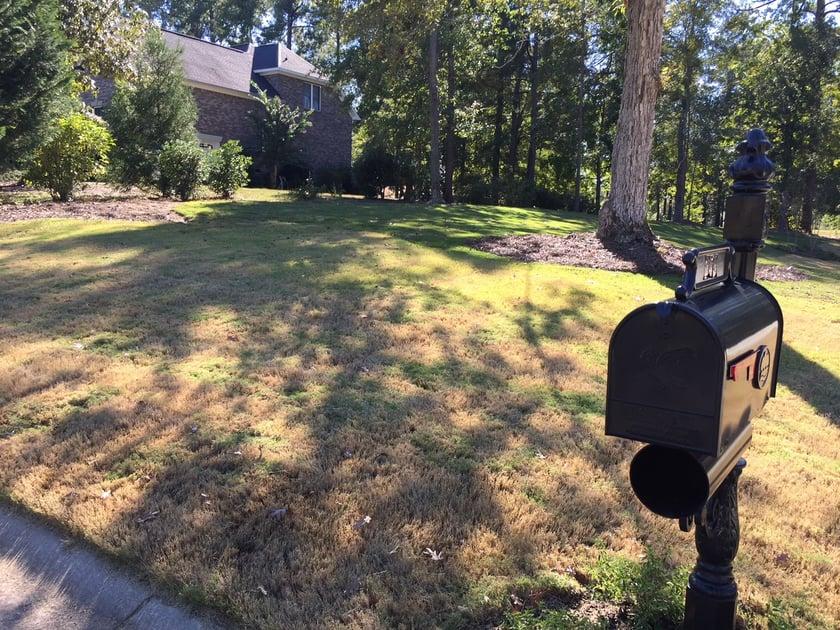 A scalped lawn