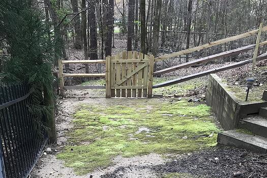 moss and yard gate