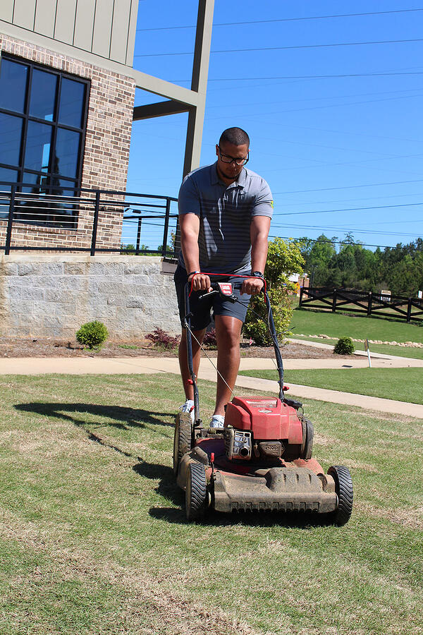 mowing new sod lawn