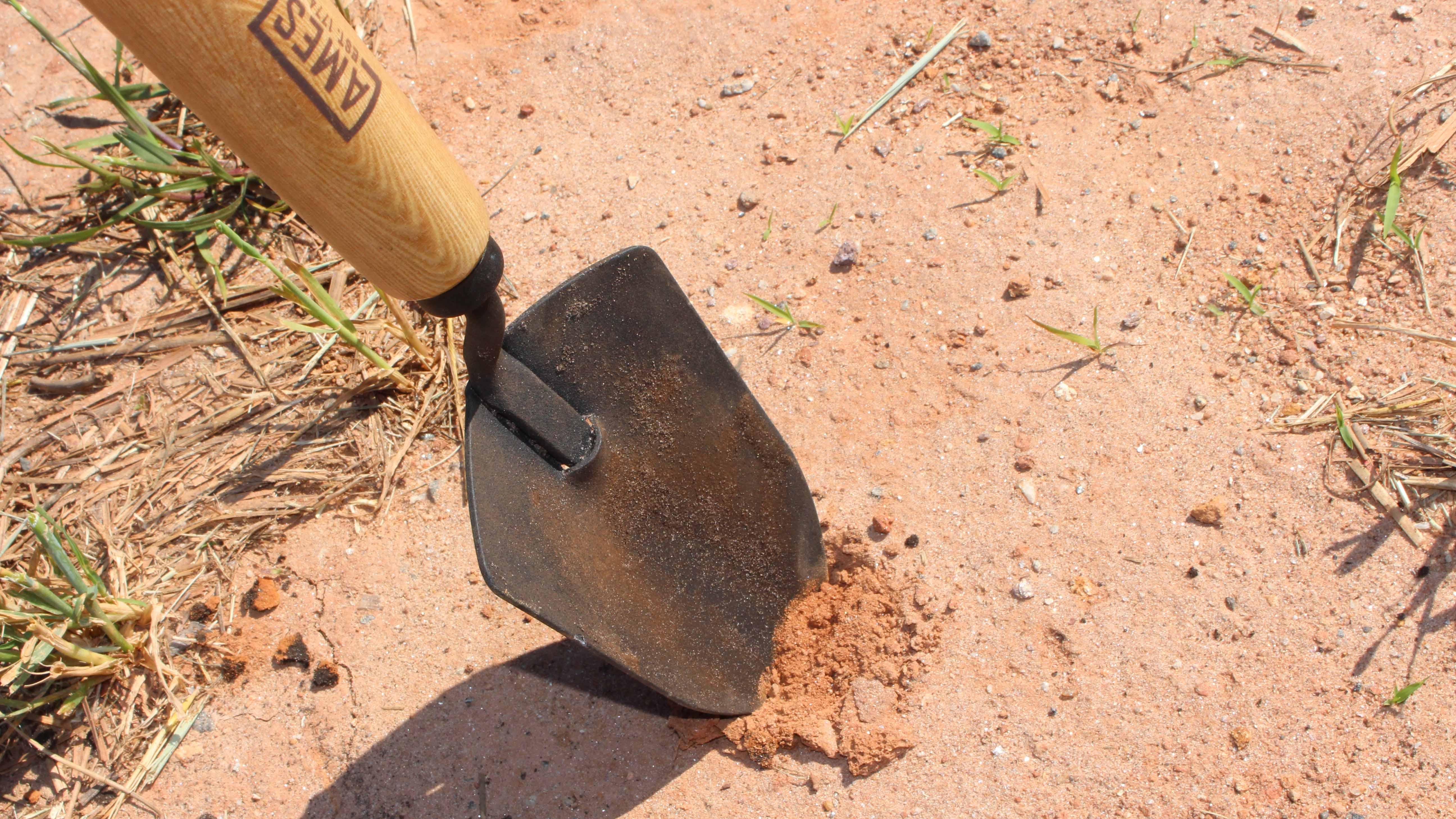 naturally poor soil