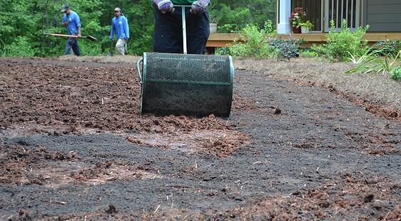 seed_planting_depth_cover_with_quarter_inch_of_compost.jpg