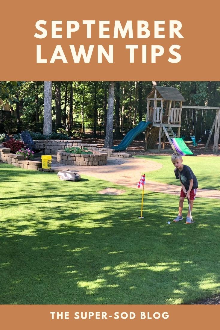 september lawn tips
