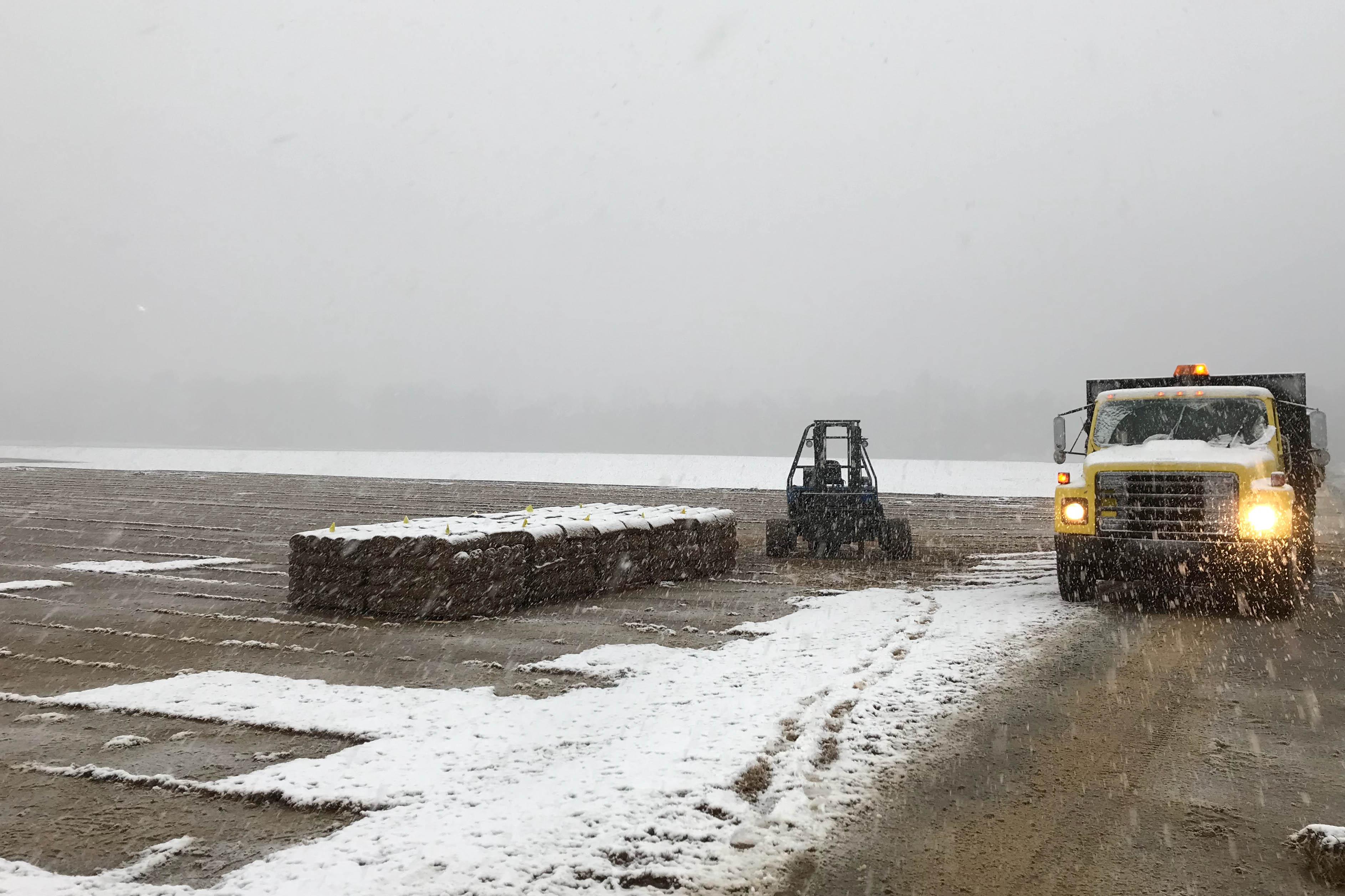 snow and sod photo by brandon chambley.jpg