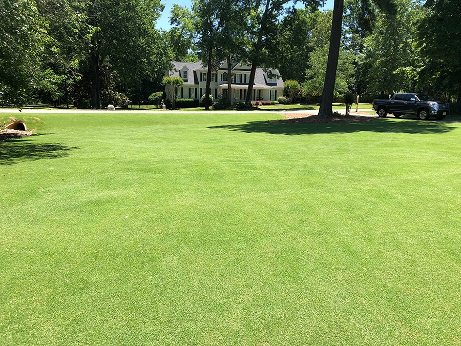Dave lawn mowed with robotic lawn mower Raleigh