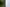 How and When to Get Your Grass Ready for a Backyard Wedding - featured image
