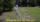 Water Sod During Installation - featured image