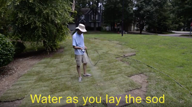 Water Sod During Installation